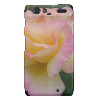 Rose of Love Motorola Droid RAZR Covers