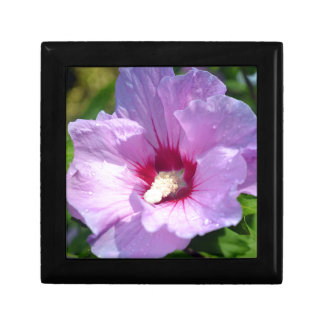 Rose of Sharon Gift Box