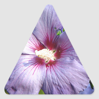 Rose of Sharon Hibiscus Blue purple Triangle Sticker