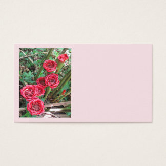Rose of Siam Business Card