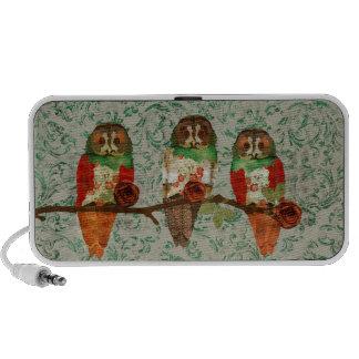 Rose Owls Jade Damask Doodle Speaker