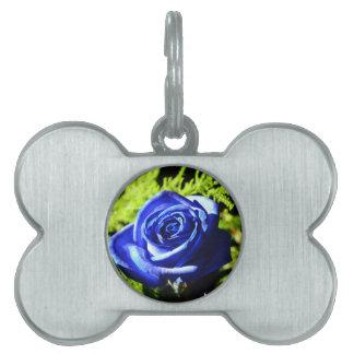 rose pet name tag