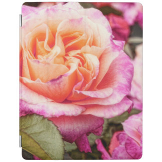 Rose Petals Photography iPad Cover