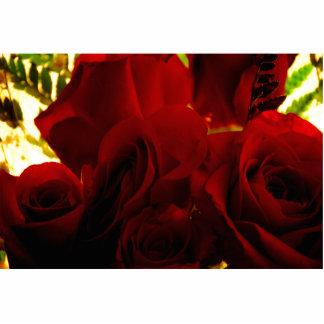 rose photo sculptures