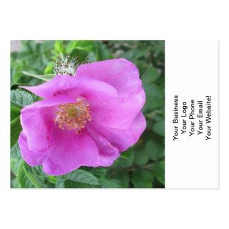 Rose Pink Beach Plum Business Cards