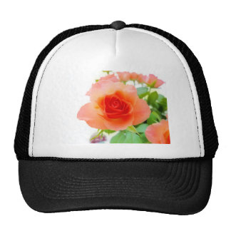 Rose Pink Cap