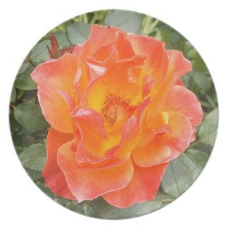 Rose Plate