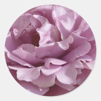 rose,purple 2 round sticker