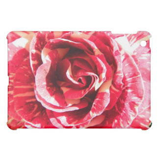 Rose red and white striped floral photography iPad mini cover