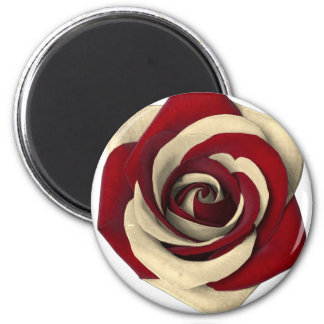 Rose Red Magnet