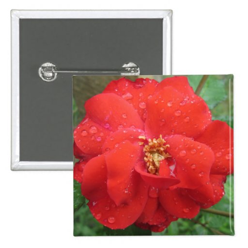 Rose Red Water Bloom Button