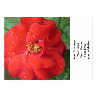 Rose Red Water Bloom Business Card Template