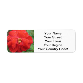 Rose Red Water Bloom Return Address Label