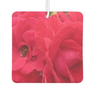 Rose Rouge Fleur