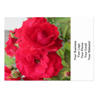 Rose Rouge Fleur Pack Of Chubby Business Cards