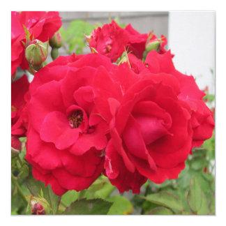 Rose Rouge Fleur 13 Cm X 13 Cm Square Invitation Card