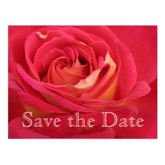 Rose Save the date 80th Birthday Celebration - Postcard