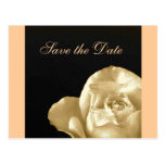 rose Save the date Postcards