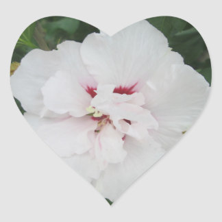 Rose Sharon White Red Heart Stickers