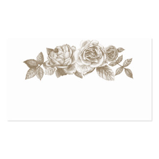 Rose Sketch Place Cards in Sepia Pack Of Standard Business Cards