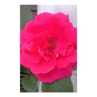 Rose Stationery Design