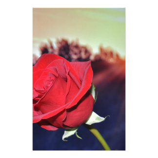 rose stationery