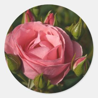 Rose Sticker