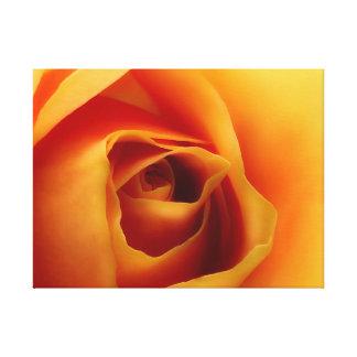Rose sunshine canvas print