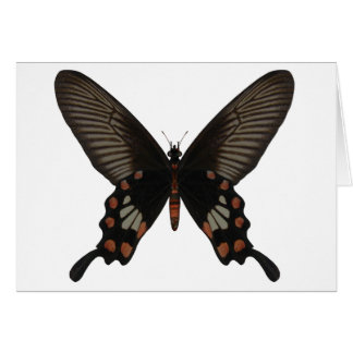 Rose Swallow Tail Butterfly Greeting Card