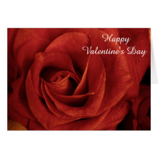 Rose Valentine's Day Card