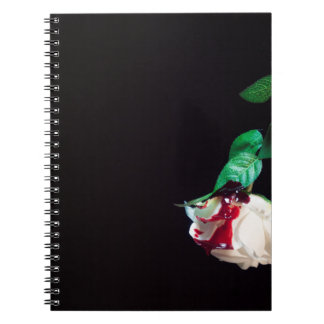Rose white blood red side notebook