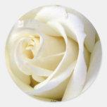 Rose White Round Stickers