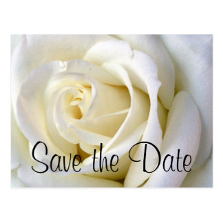 Rose White, Save the Date Postcard