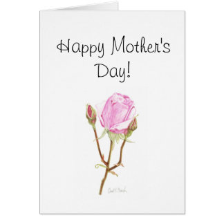 Rose with Buds - Mother's Day Note Card