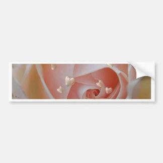 rose with hearts,beige bumper sticker