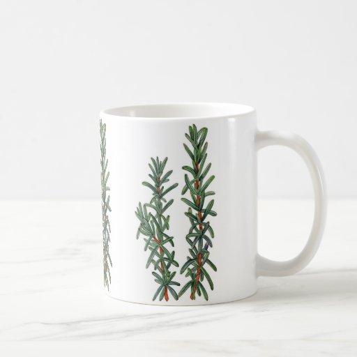 Rosemary Coffee Mugs