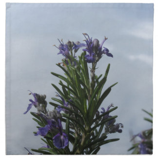 Rosemary plant with flowers against the sky napkin