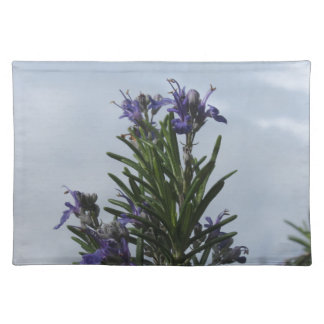 Rosemary plant with flowers against the sky placemat