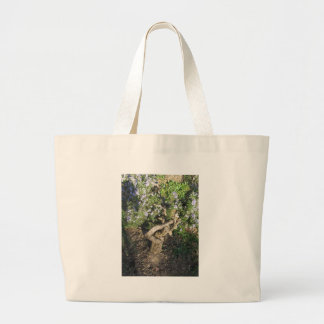 Rosemary plant with flowers in Tuscany, Italy Large Tote Bag