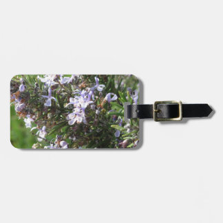 Rosemary plant with flowers in Tuscany, Italy Luggage Tag