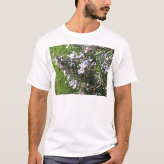 Rosemary plant with flowers in Tuscany, Italy T-Shirt