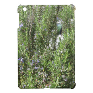 Rosemary plant with flowers . Tuscany, Italy iPad Mini Cover