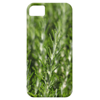 Rosemary (Rosmarinus officinalis) branches Case For The iPhone 5