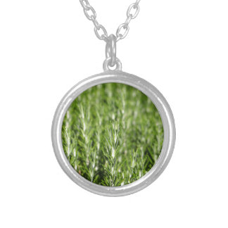 Rosemary (Rosmarinus officinalis) branches Silver Plated Necklace
