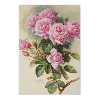 Roses and Bumblebees Paul de Longpre Fine Art Posters