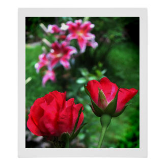 Roses and Lilies Posters