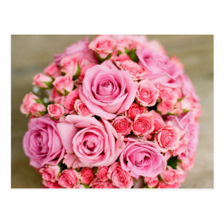 Roses For Mom! Postcard