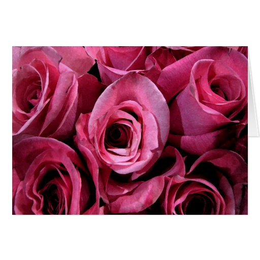 Roses for Mother's Day Cards