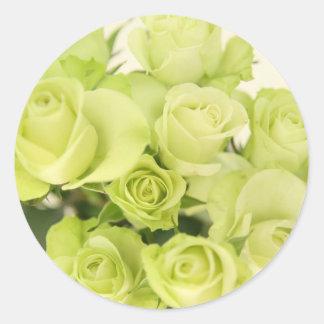 Roses green round sticker