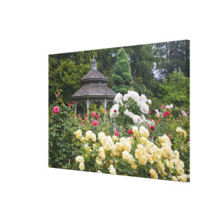 Roses in bloom and Gazebo Rose Garden at the Stretched Canvas Print
